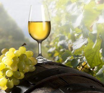 white-wine-01